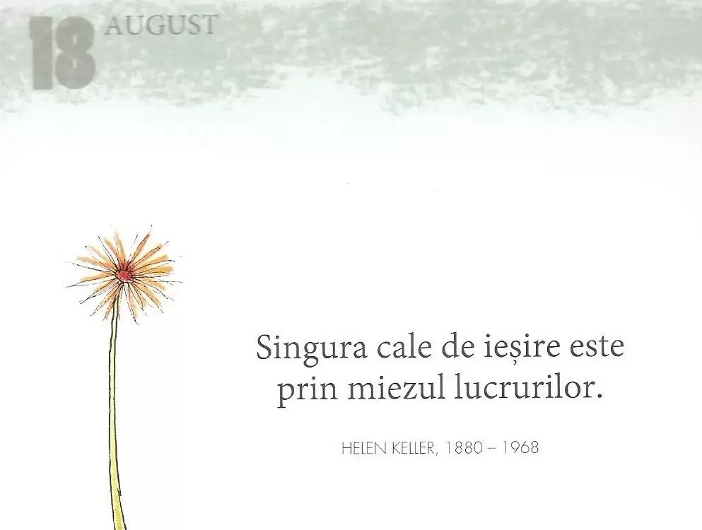 18 August