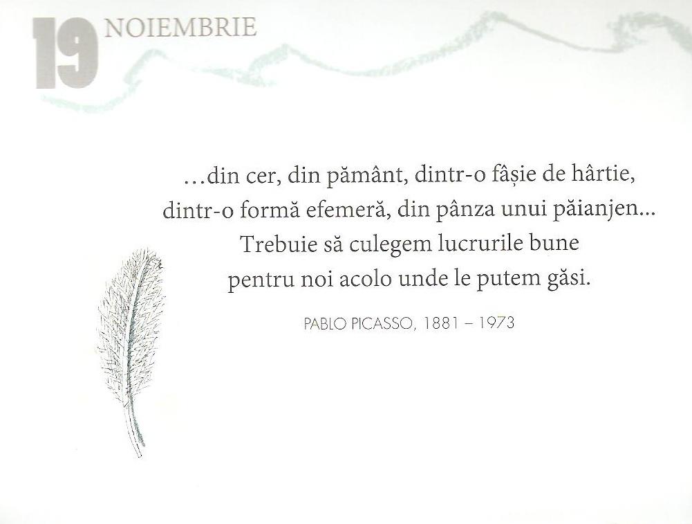 19 Noiembrie