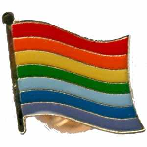 Orginal Rainbow Flaggen Pin