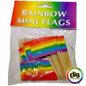48 Rainbow Mini Flags