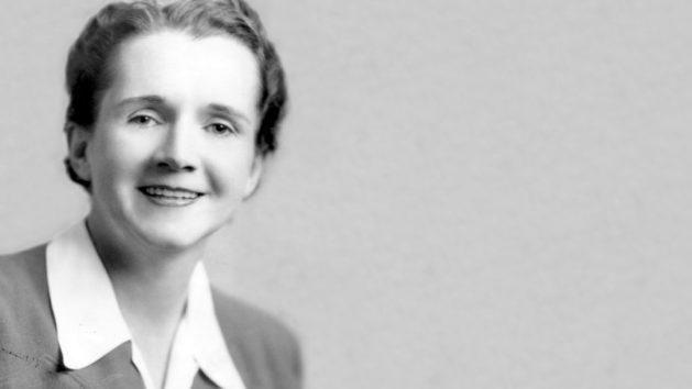 Have you heard of Rachel Carson - Love Jo by Jo Cooper
