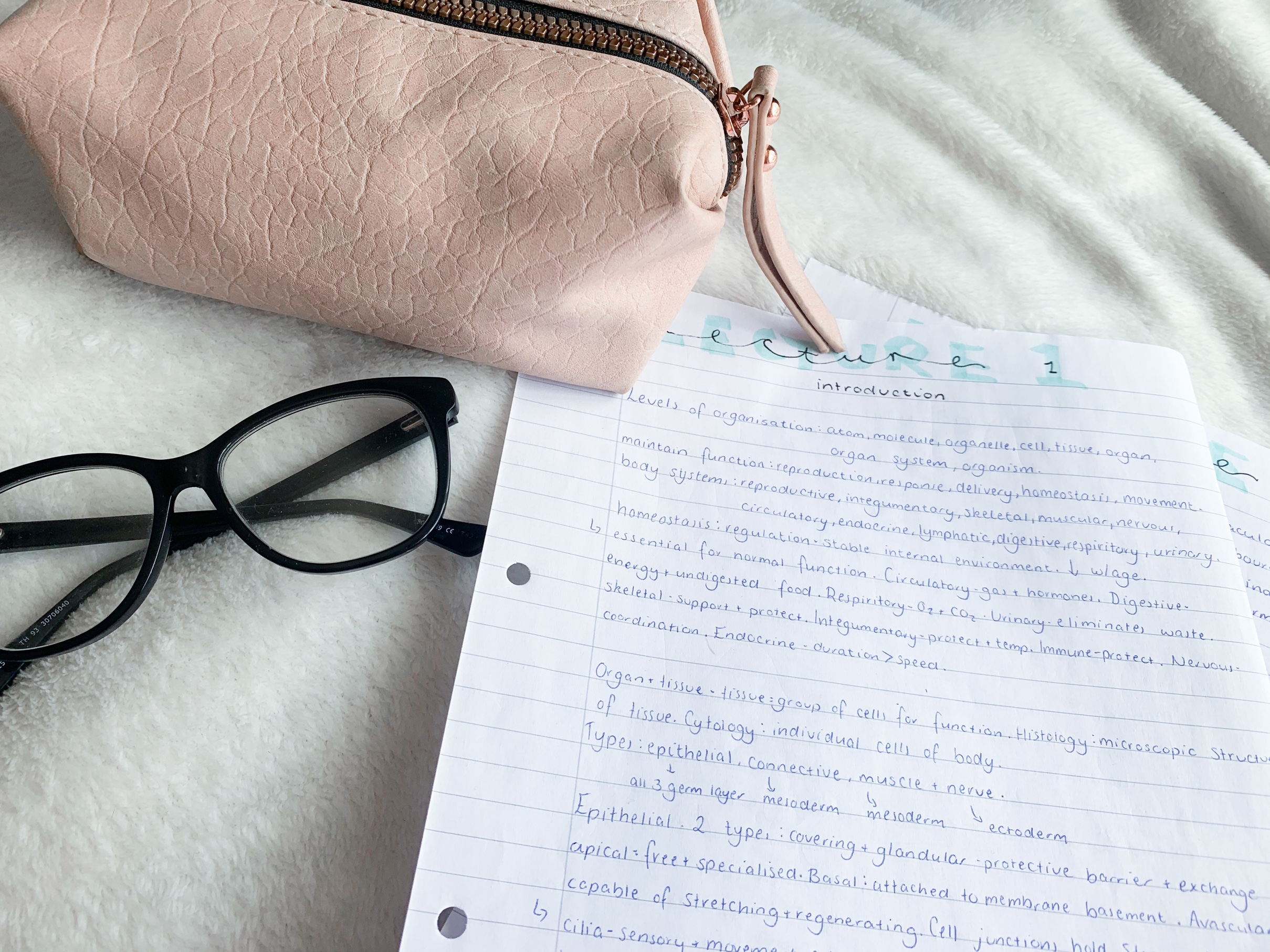 Study notes alongside glasses and a pencil case.