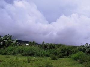 Road to Pandan (17)