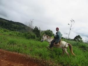 Road to Pandan (23)