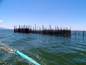 Naungan Fishing community (29)