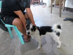Drive to Tacloban (13)