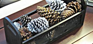 Shopping at Home for Fall Decor & DIY Pine Cones
