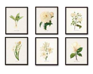 Look for Less: Botanical Prints & Master Bedroom Planning