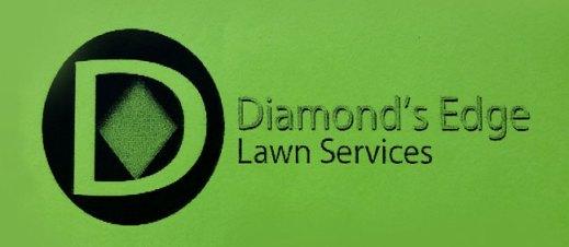 diamond-edge-logo-9'