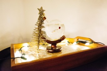 holiday-home-5