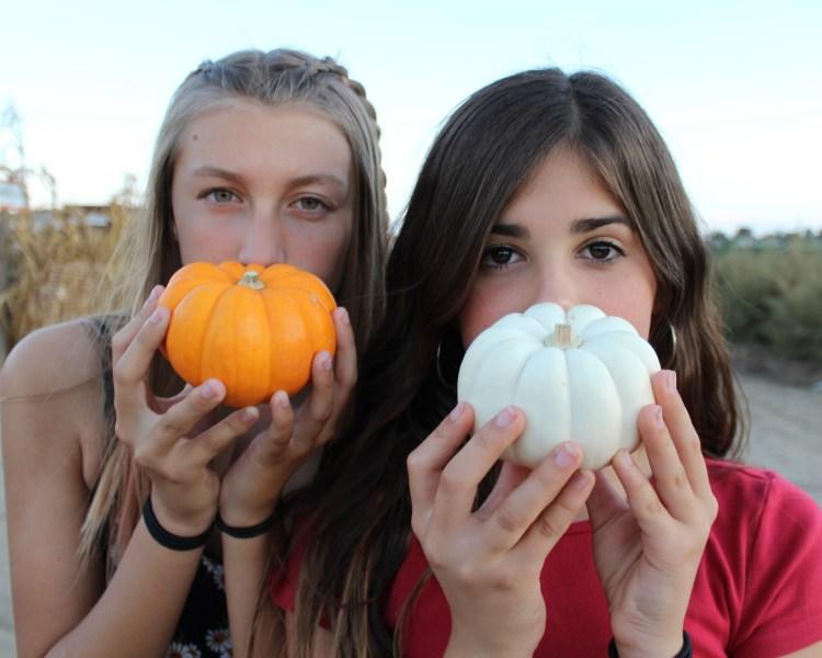 pumpkin24