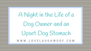 A Night In the Life of a Dog Owner and an Upset Dog Stomach