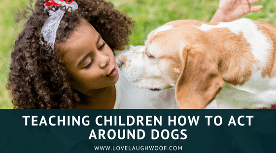 Teaching Children How to Act Around Dogs