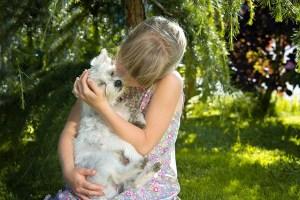 Teaching Children How to Act Around Dogs