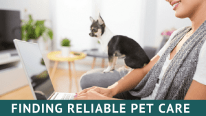Finding reliable pet care worksheet cover