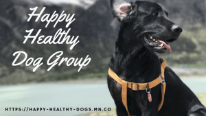 Happy Healthy Dogs Group Mighty Networks platform Love Laugh Woof