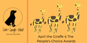 April the Giraffe and the People's Choice Awards
