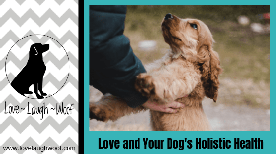 Love and Your Dog's Holistic Health