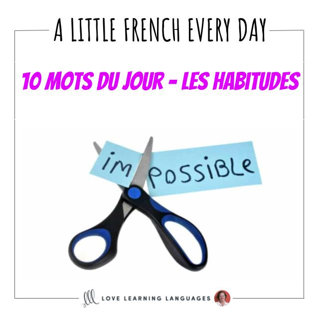 French Vocabulary list - 10 words about habits.