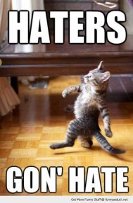 http://funnyasduck.net/wp-content/uploads/2012/10/funny-haters-gonna-hate-cat-pics.jpg