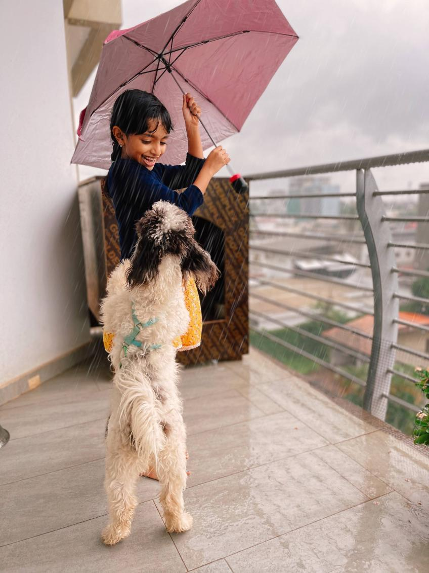 Rainy Day with a girl and her dog