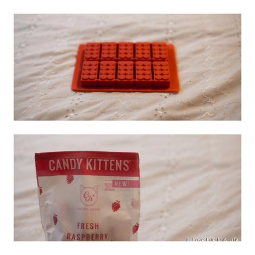 Lego mould & Candy Kittens Sweets