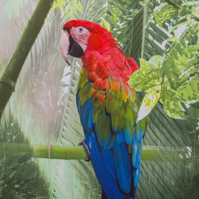 parrot bird tropical rainforest shower curtain