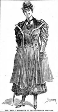 The 1894 Antique Dress World Reporter In Dress-Reform Costume