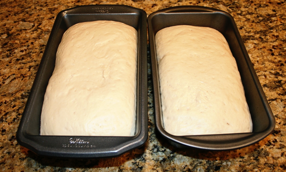 Homemade Bread Dough Risen