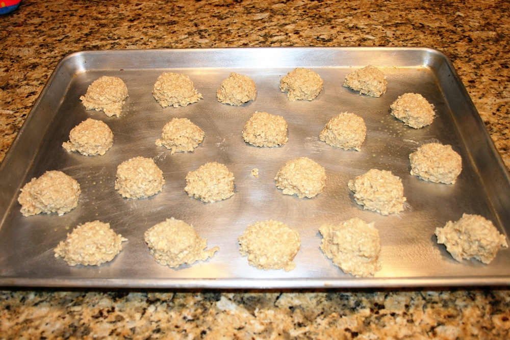 Oatmeal Coconut Cookies Before