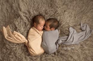 plano newborn twin photographer