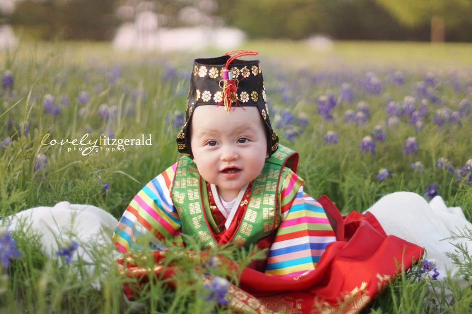 little elm bluebonnet photographer