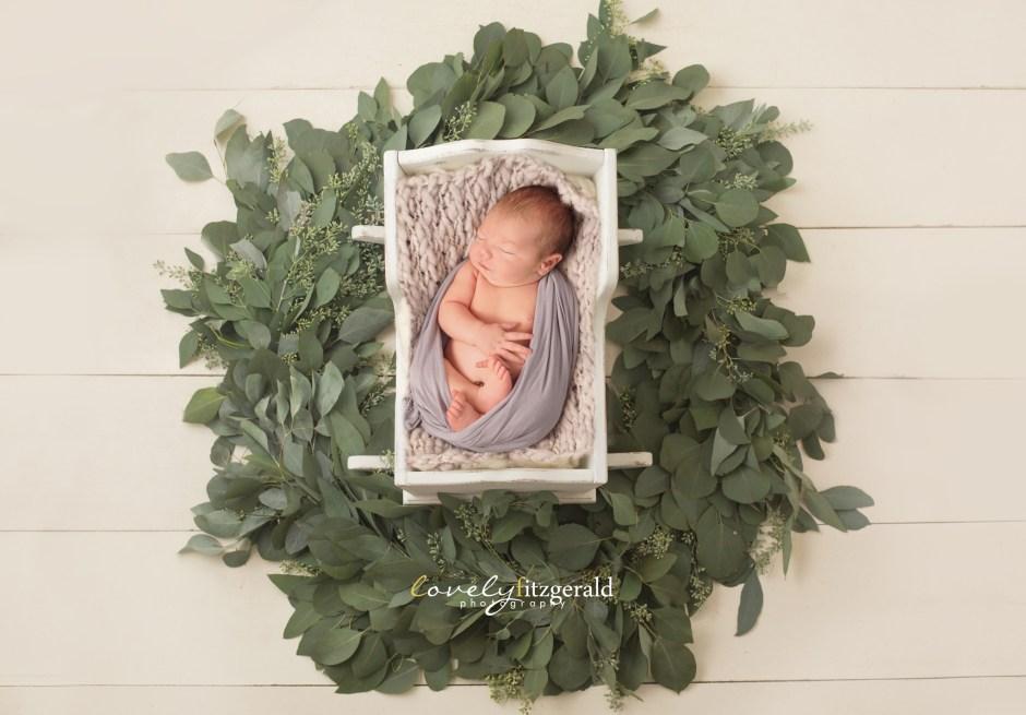 frisco newborn photographers