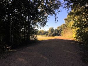 Seabourne Creek Park walking trails
