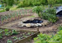 Building a Wildlife Pond in the Vegetable Garden  Lovely ...