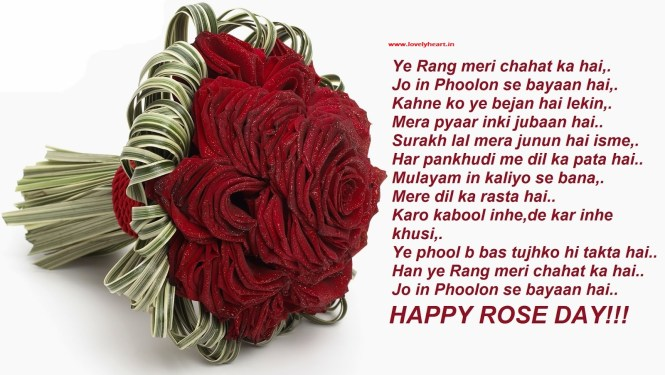 rose day wishes in hindi wallpaper