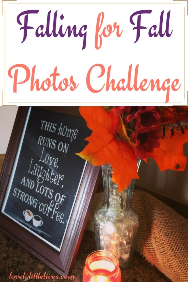 Fall for fall photo Challenge