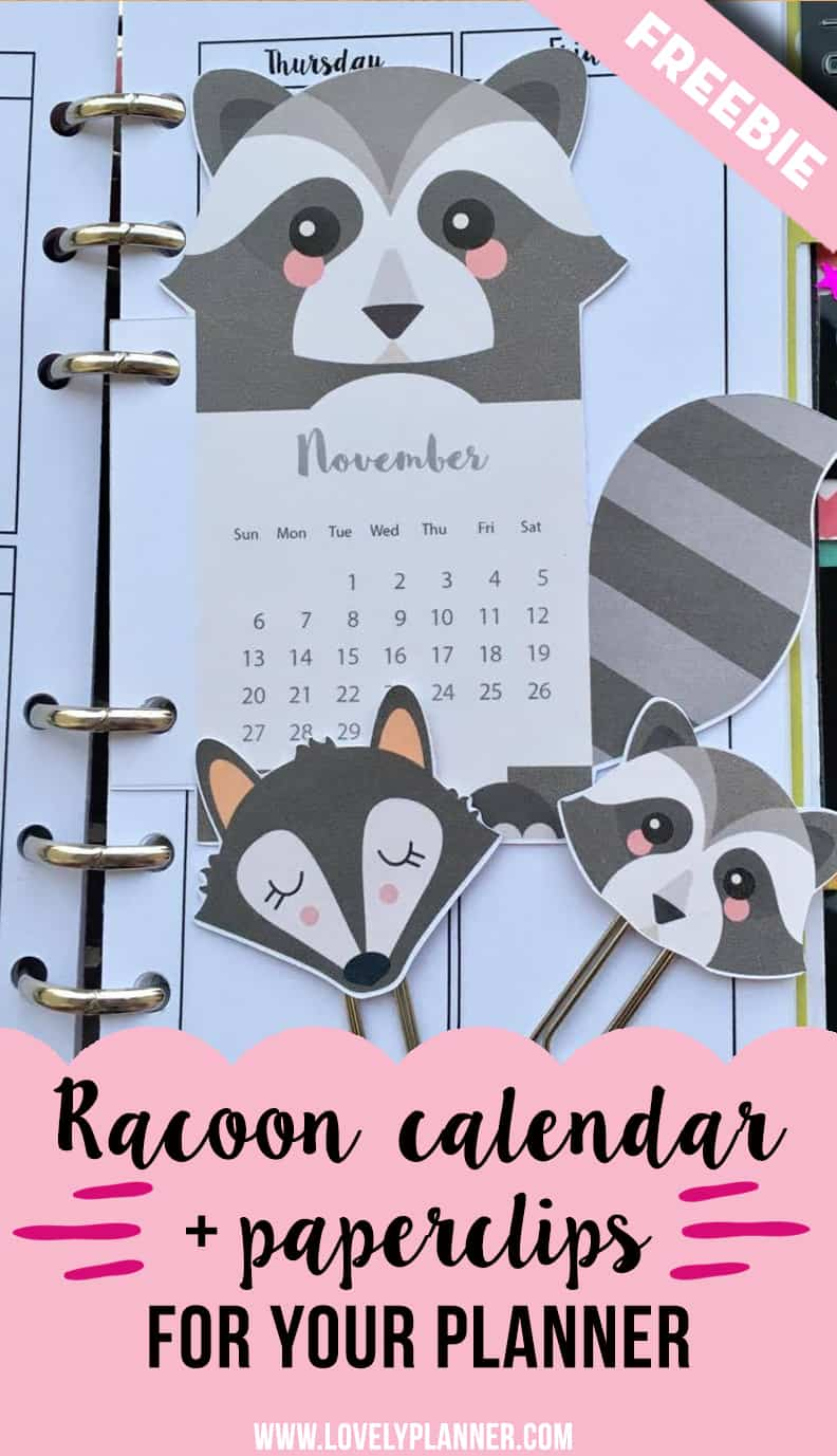 racoon calendar divider paperclips