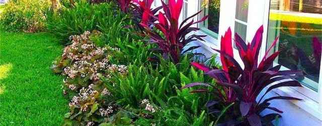 Cheap landscaping ideas for your front yard that will inspire you (36)
