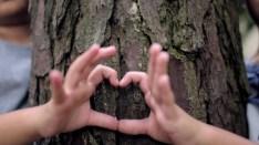 KIDS_HAND