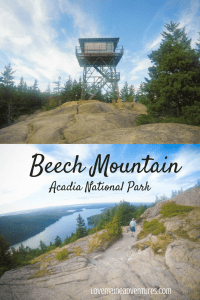 Beech Mountain, Acadia National Park, Maine hikes, hikes for beginners,