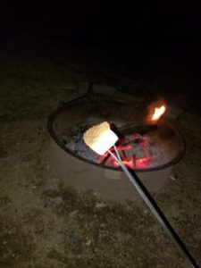 Unfortunately, I didn't get a shot of the sneaky squirrel but I did get one of my marshmallow!