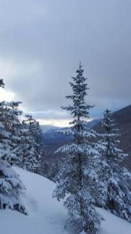 Southern Views