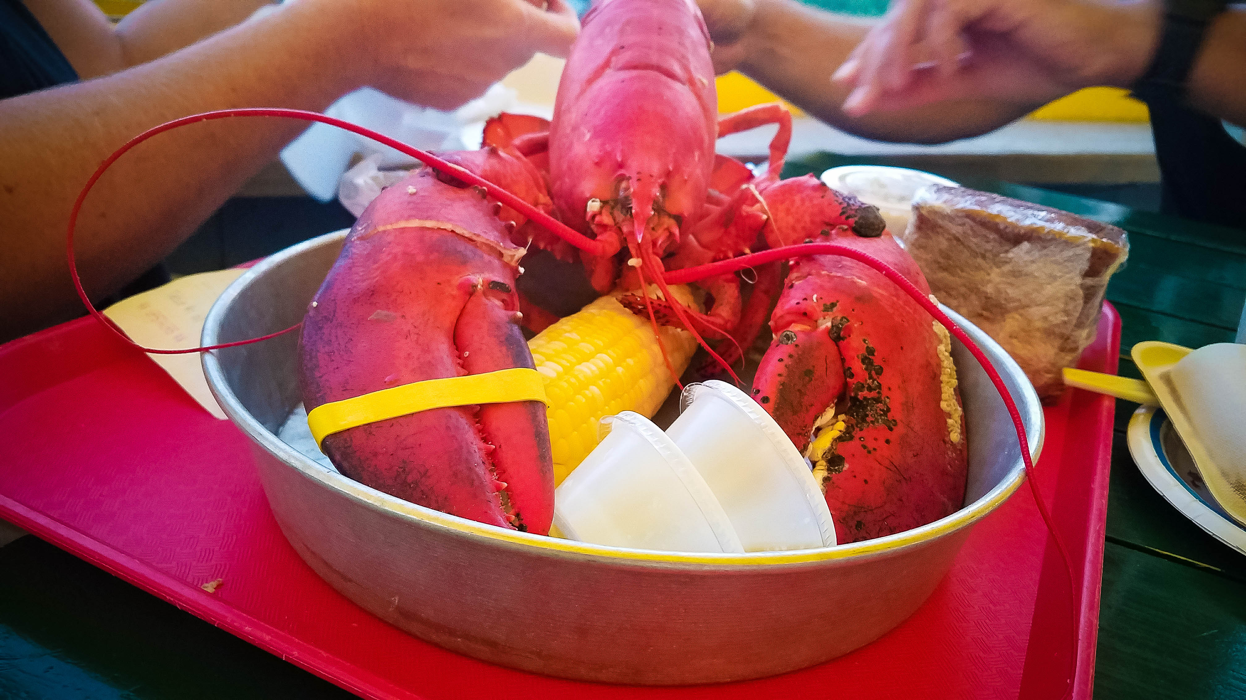 Beginner's Guide to Dining & Drinking in Bar Harbor