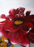 Red Dalia (2013) 50x70 cm AVAILABLE