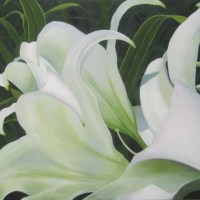 White Lilies and Grass