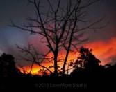 A nighttime sky