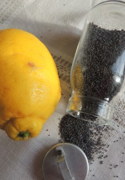 Citronsmåkager med blå birkes