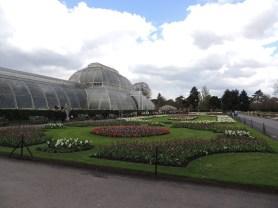 Glasshouse Kew Garden