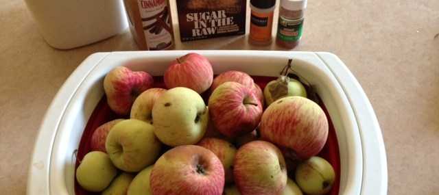 Homemade Apple Pie Filling and Applesauce